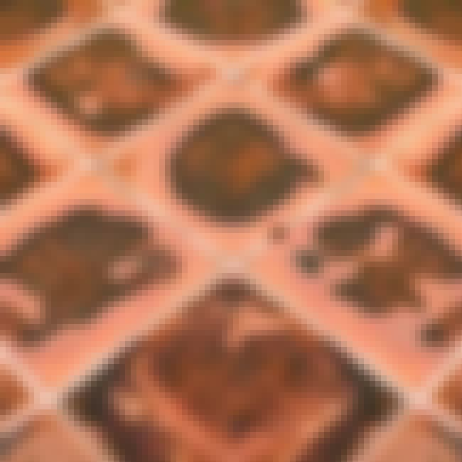 Learn How to Remove Rust is listed (or ranked) 1 on the list The Best Ways to Clean Tile Floors