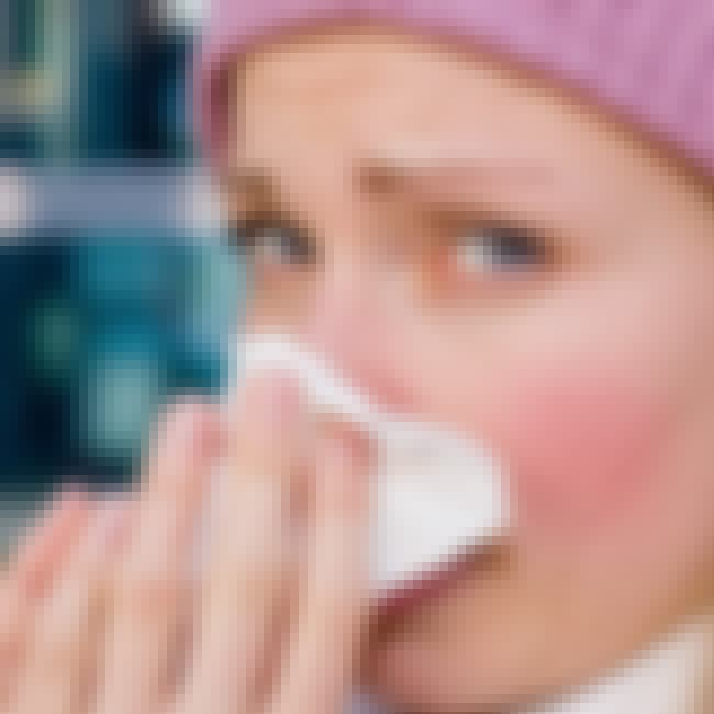 Comfort the Common Cold is listed (or ranked) 1 on the list 15 Ways You Can Use Regular Honey