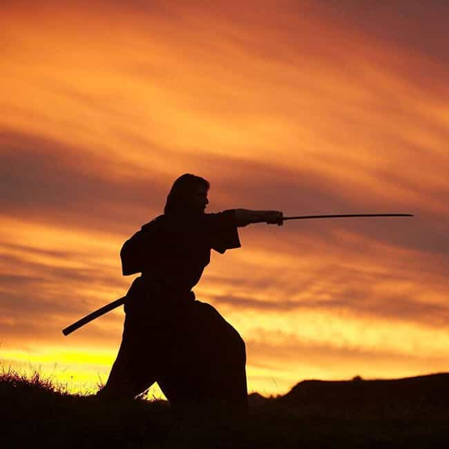 Savages With Bows And Ar... is listed (or ranked) 2 on the list The Best Quotes From 'The Last Samurai'