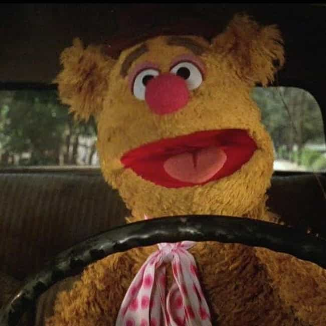 A Correspondence Course is listed (or ranked) 1 on the list The Best Quotes From The Muppet Movie