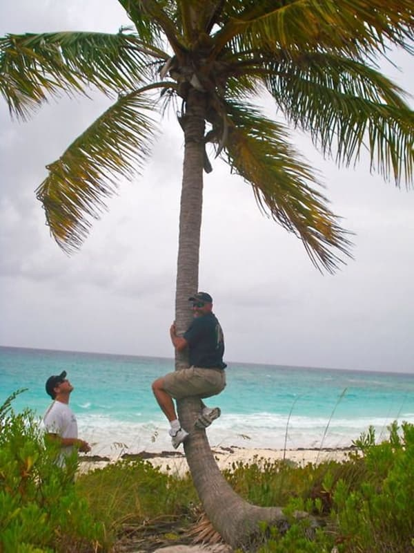"""This Dad's """"Castaway"""" Impression Ends Here on Random Very Best Photos of Dads on Vacation"""