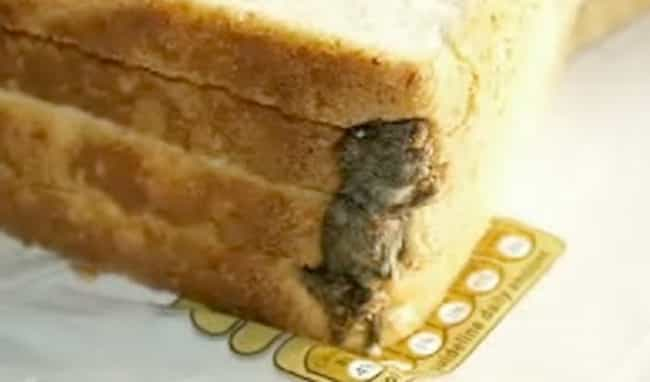 The Little Guy in the Loaf is listed (or ranked) 4 on the list The Grossest Things Ever Found in Packaged Foods
