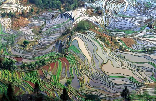Chinese Rice Fields Looking Mo... is listed (or ranked) 2 on the list 45 Amazing Aerial Photographs That Will Make You Feel Small