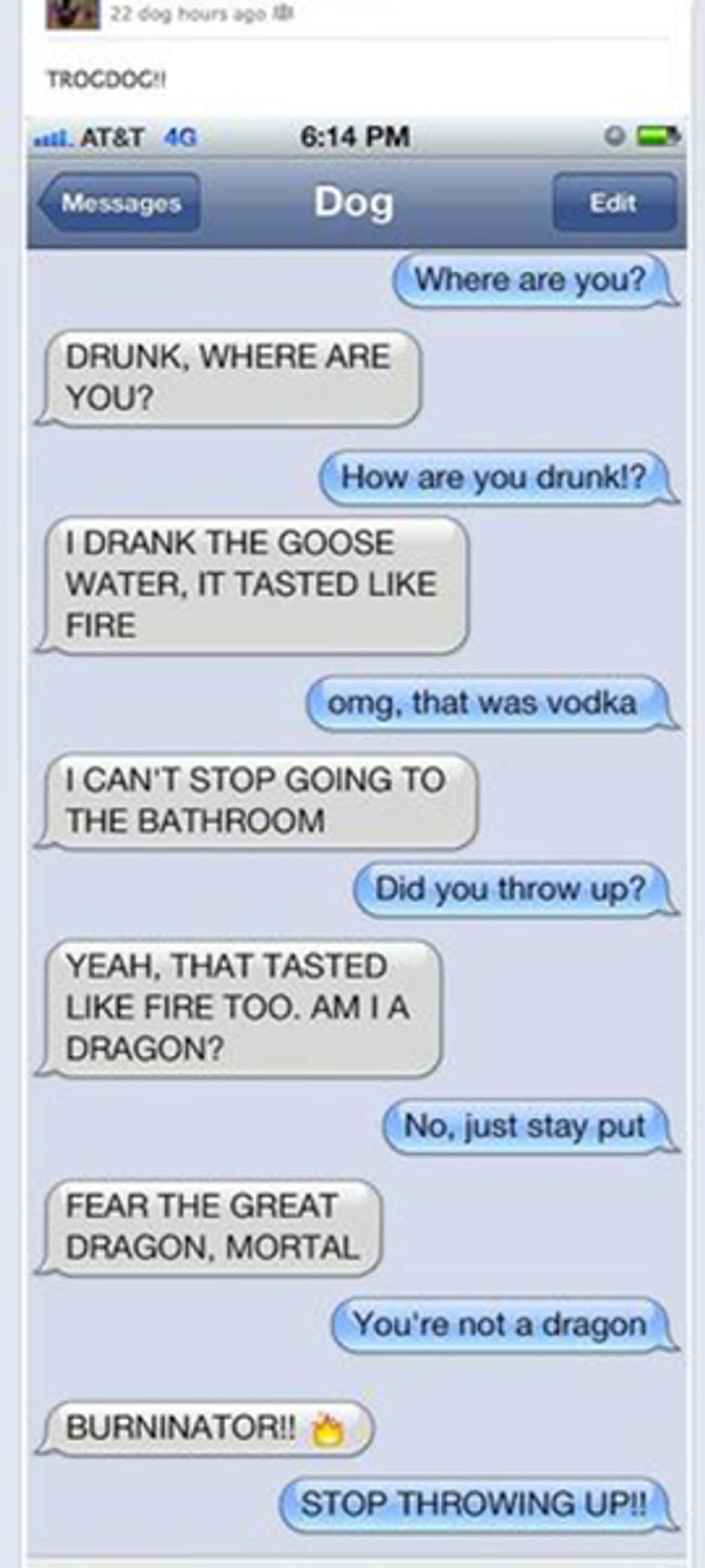 Dragons LOVE Goose Water is listed (or ranked) 1 on the list 17 Drunk Texts You Wish You Got