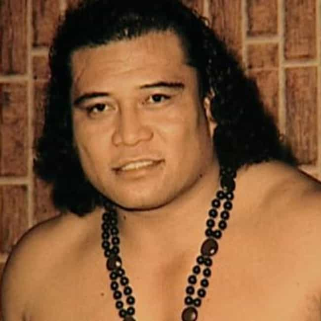 The Anoaʻi / Maivias is listed (or ranked) 2 on the list The Greatest Families In Wrestling