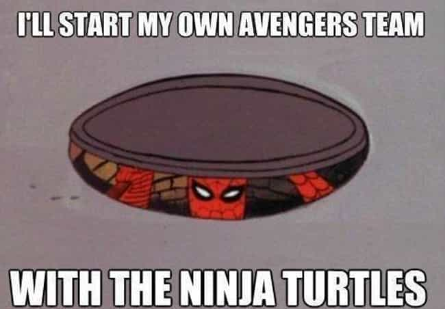 Spiders In A Half-shell? is listed (or ranked) 3 on the list The Best Spiderman Memes on the Internet