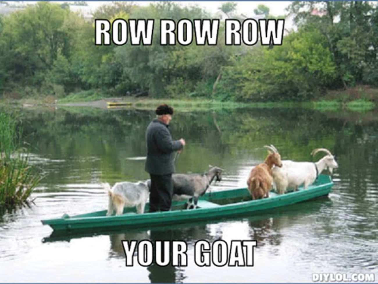 The nursery rhyme just got rew is listed (or ranked) 1 on the list The Best Goat Memes, Jokes, and Puns