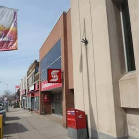 Danforth Mosaic BIA is listed (or ranked) 7 on the list Toronto Neighbourhoods