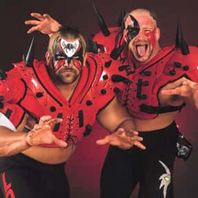 Legion of Doom is listed (or ranked) 1 on the list The Best Tag Teams In WWE History