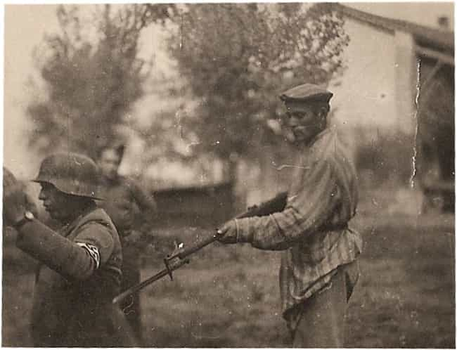 A Liberated Jewish Man Holds a... is listed (or ranked) 3 on the list 36 Rare Photos From World War II