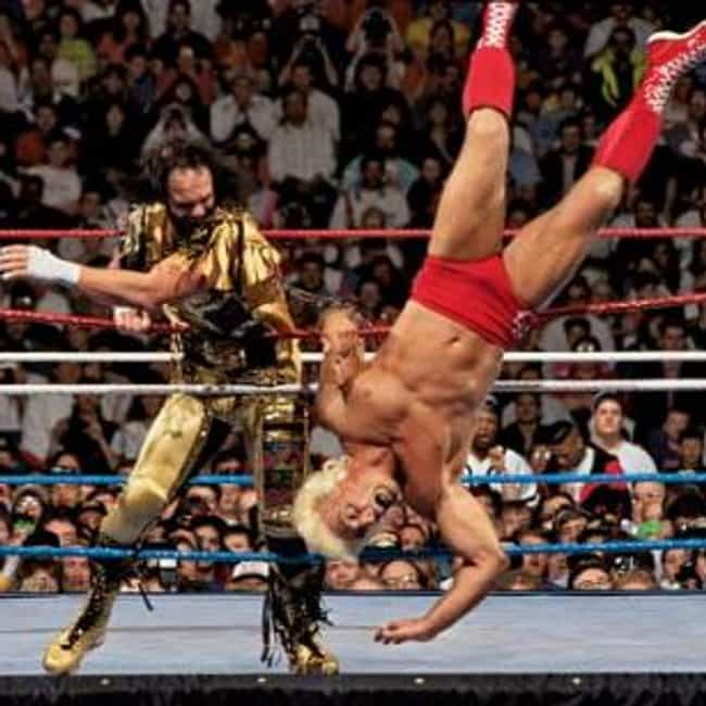 Randy Savage vs. Ric Flair is listed (or ranked) 2 on the list The Best Wrestlemania Matches