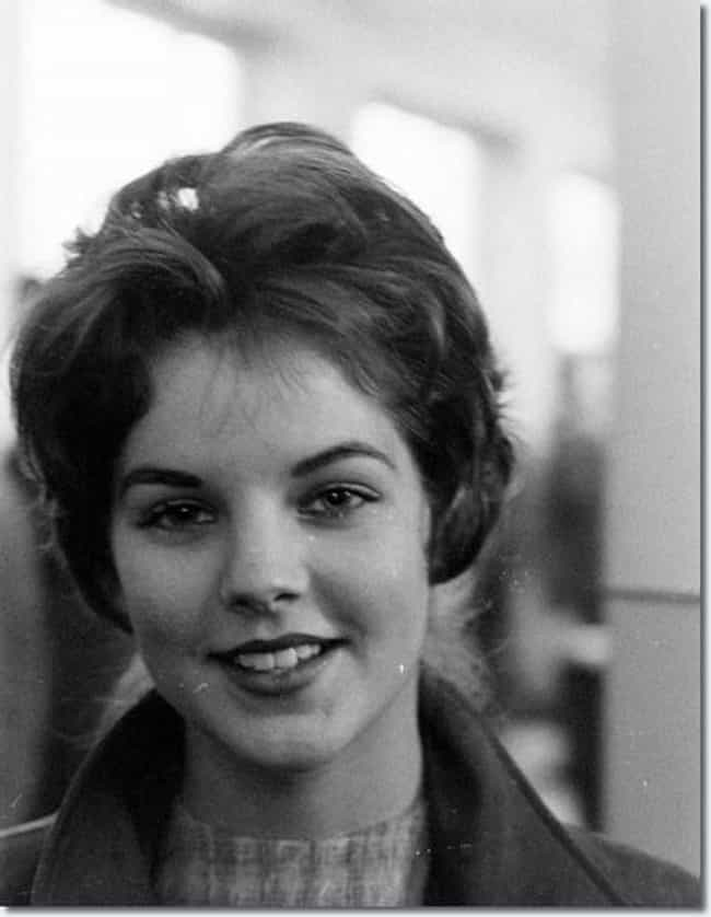 Young Priscilla Presley in a T... is listed (or ranked) 4 on the list 13 Pictures of Young Priscilla Presley