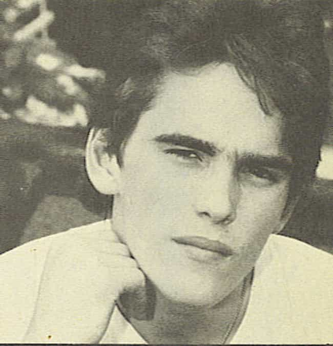 20 Pictures of Young Matt Dillon