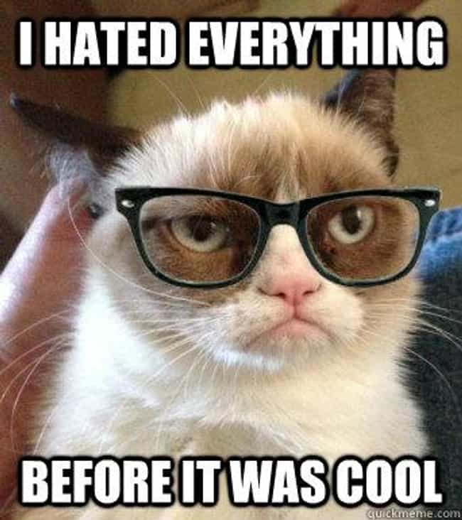 The Consummate Hipster is listed (or ranked) 3 on the list The Top 20 Hipster Memes