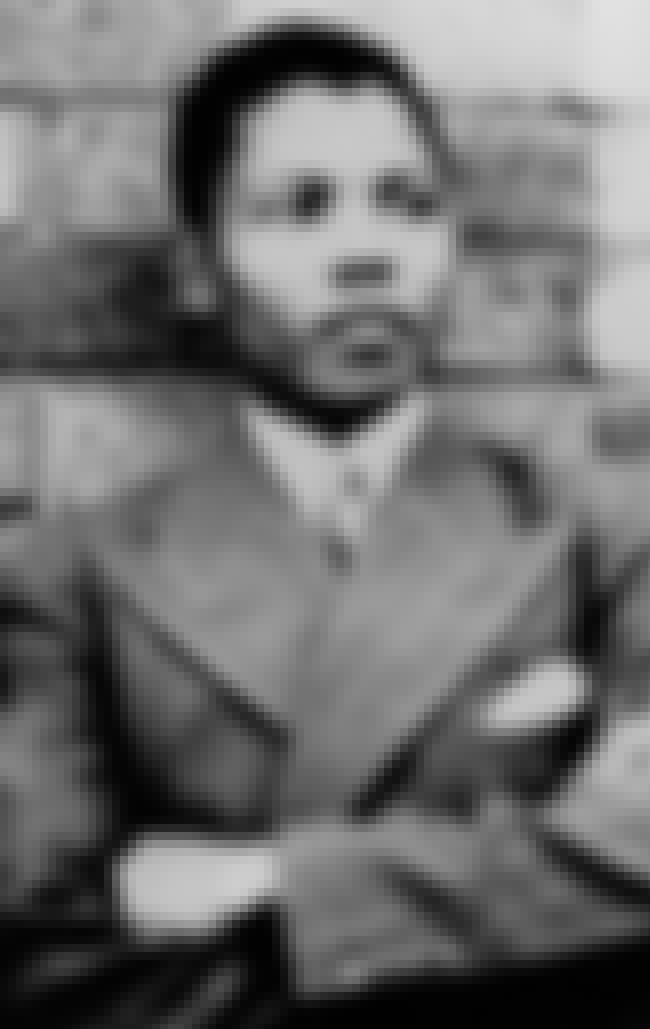 Young Nelson Mandela in Stripe... is listed (or ranked) 2 on the list 24 Pictures of Young Nelson Mandela