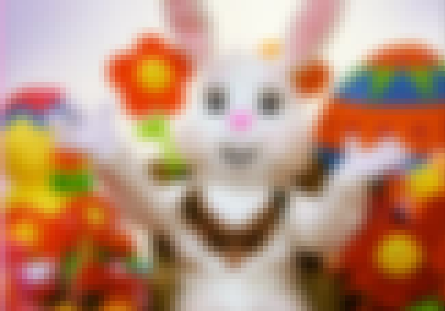 Where Did The Easter Bunny Com... is listed (or ranked) 1 on the list The Biggest Easter Myths & Legends, Debunked