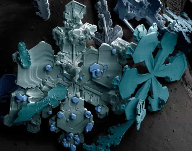 This Snow! is listed (or ranked) 2 on the list 38 Awesome Things Seen Through a Microscope
