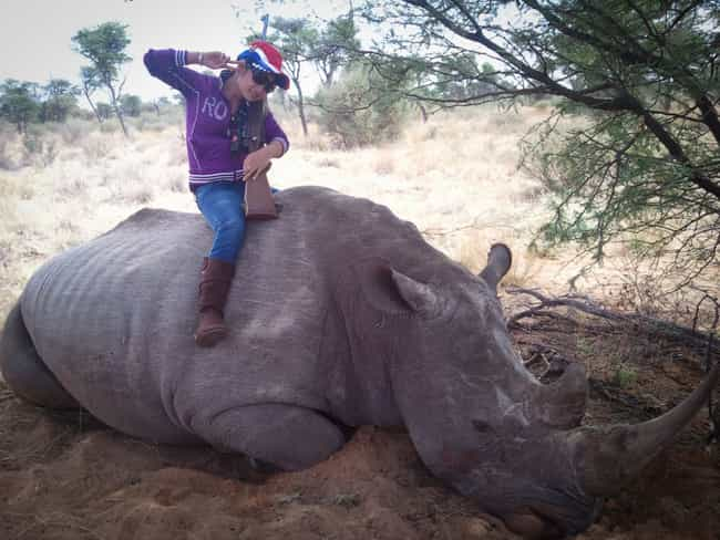 Rhino Horn Is More Valuable Th... is listed (or ranked) 3 on the list 18 Disgusting Pics of Trophy Hunters Who Killed Wild Animals