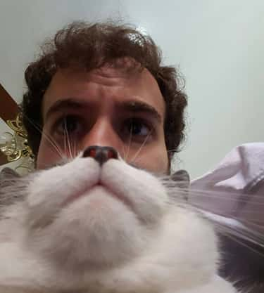 Man Turned Dr. Seuss Character is listed (or ranked) 2 on the list The 18 Greatest Animal Photobombs Ever