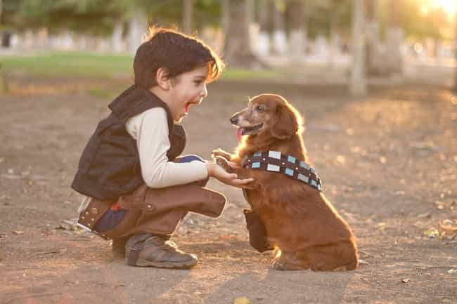 Chewbarka is listed (or ranked) 3 on the list The Punniest Dog Names for Your Puppy Pals