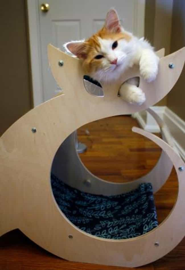 Cattino Cat Scratcher is listed (or ranked) 3 on the list 28 Awesome Products You'll Find at CatCon 2015