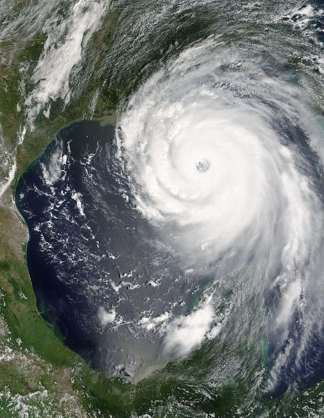 The Response to Hurricane Katrina