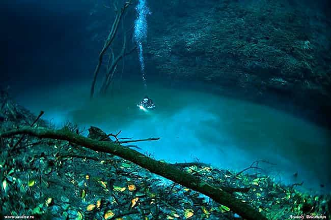 The Underwater River of Cenote... is listed (or ranked) 2 on the list The Most Incredible Underwater Travel Sights