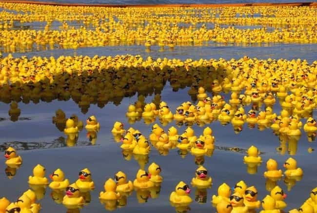 29,000 Rubber Duckies is listed (or ranked) 1 on the list 20 Weird Cargo Spills You Can't Help But Gawk At