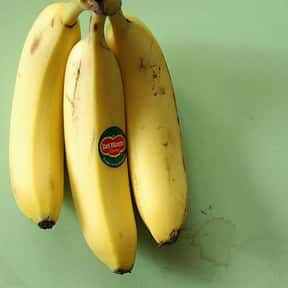 Why Did The Banana Go To The D is listed (or ranked) 16 on the list The Funniest Jokes For Kids