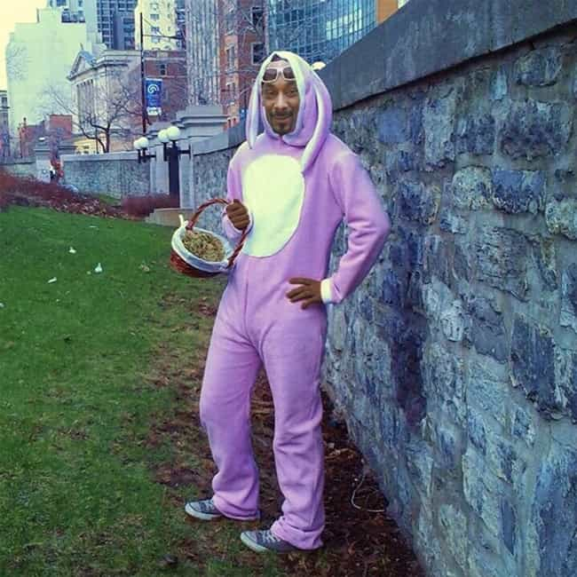 Snoop Bunny is listed (or ranked) 3 on the list Fake Viral Images That Probably Fooled You