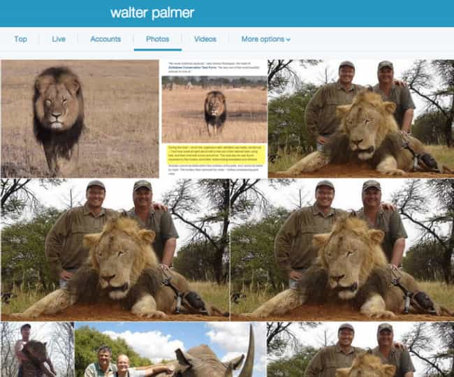 The Internet Is Up in Arms, Bu... is listed (or ranked) 1 on the list 18 Disgusting Pics of Trophy Hunters Who Killed Wild Animals