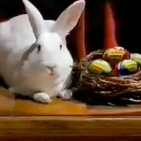 The Cadbury Bunny is listed (or ranked) 11 on the list The Greatest Animals in Commercials