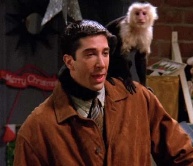 Marcel the Monkey from Friends is listed (or ranked) 3 on the list 16 Animal Actors Who Were Difficult on Set