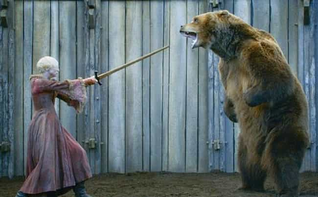 The Bear from Game of Thrones is listed (or ranked) 4 on the list 16 Animal Actors Who Were Difficult on Set