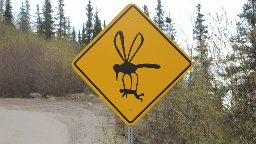 Random the Funniest Street Signs on the Open Road