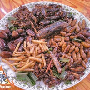 Fried Insects is listed (or ranked) 7 on the list The Worst Foods to Eat on a Date