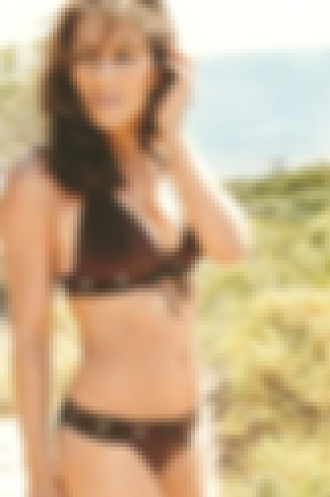 Elizabeth Hurley in her Brown ... is listed (or ranked) 2 on the list The Hottest Elizabeth Hurley Bikini Pictures