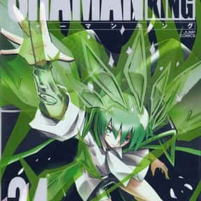 Shaman King Kang Zeng Bang is listed (or ranked) 24 on the list The Best Adventure Manga of All Time