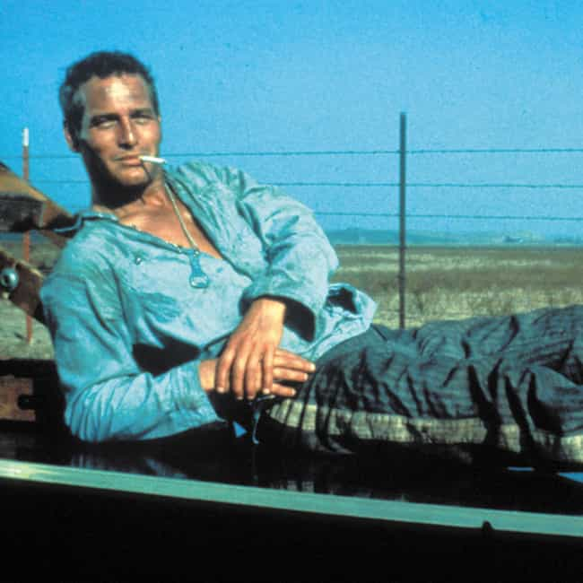 """Luke, """"Cool Hand Luke"""" is listed (or ranked) 3 on the list The Greatest Rebels in Movie History"""
