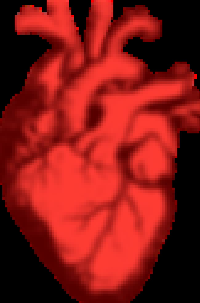 A Human Heart is listed (or ranked) 2 on the list Things You Won't Believe Were 3D Printed