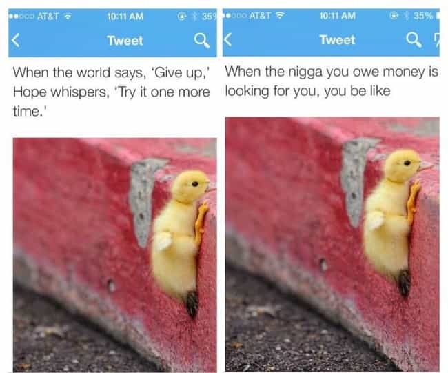 Funny Black Twitter Vs White Twitter Comparisons - 20 hilarious tweets that sum up what its like dating someone