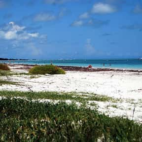 Bahia Honda is listed (or ranked) 15 on the list The Best Beaches in Florida