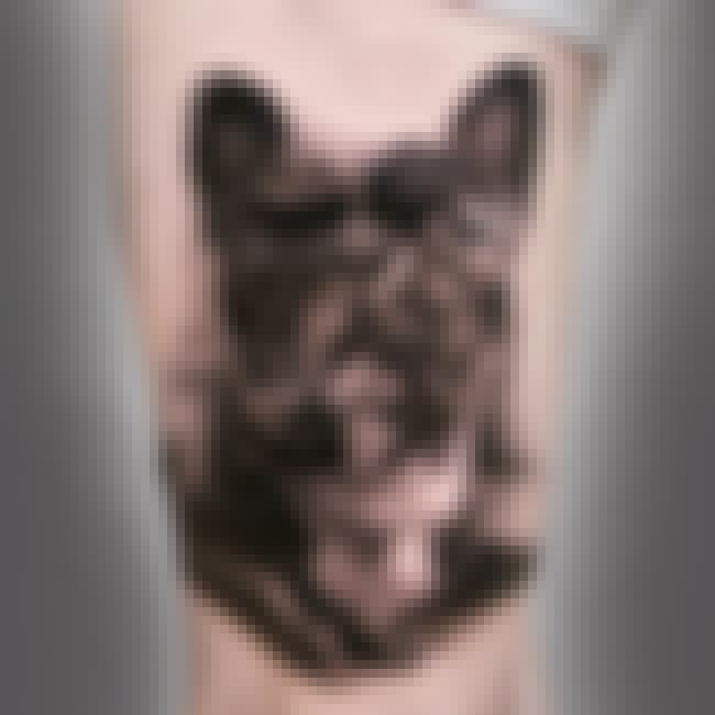 The Classic Pooch Portrait at ... is listed (or ranked) 3 on the list 45 Beautiful Tattoos Inspired by Dogs