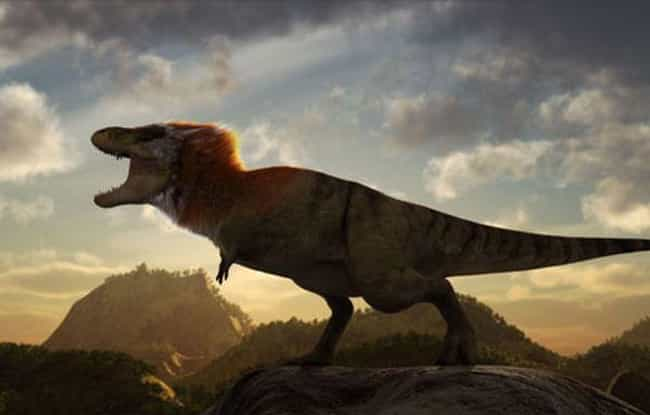 Feathered Hair is listed (or ranked) 2 on the list Proof Science Hates the Tyrannosaurus Rex