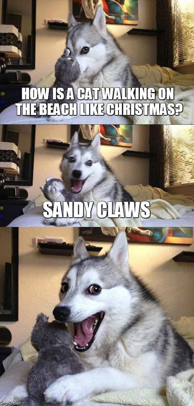 Pun Husky Rides Again! ... is listed (or ranked) 6 on the list The Most Cringeworthy Christmas Puns