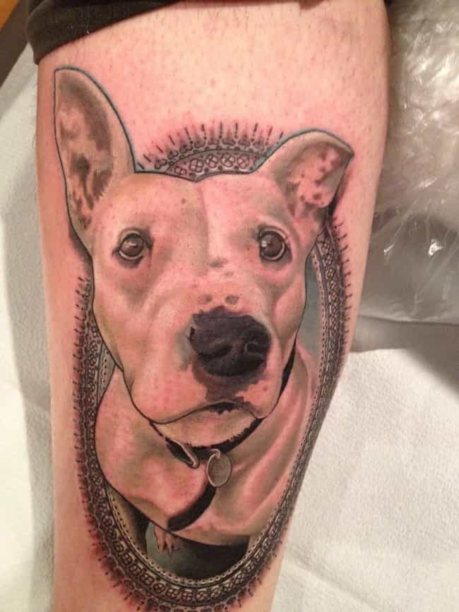 Dog Portrait Tattoo is listed (or ranked) 4 on the list Portrait Tattoo Ideas
