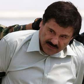 El Chapo is listed (or ranked) 6 on the list Real World Avengers Villains