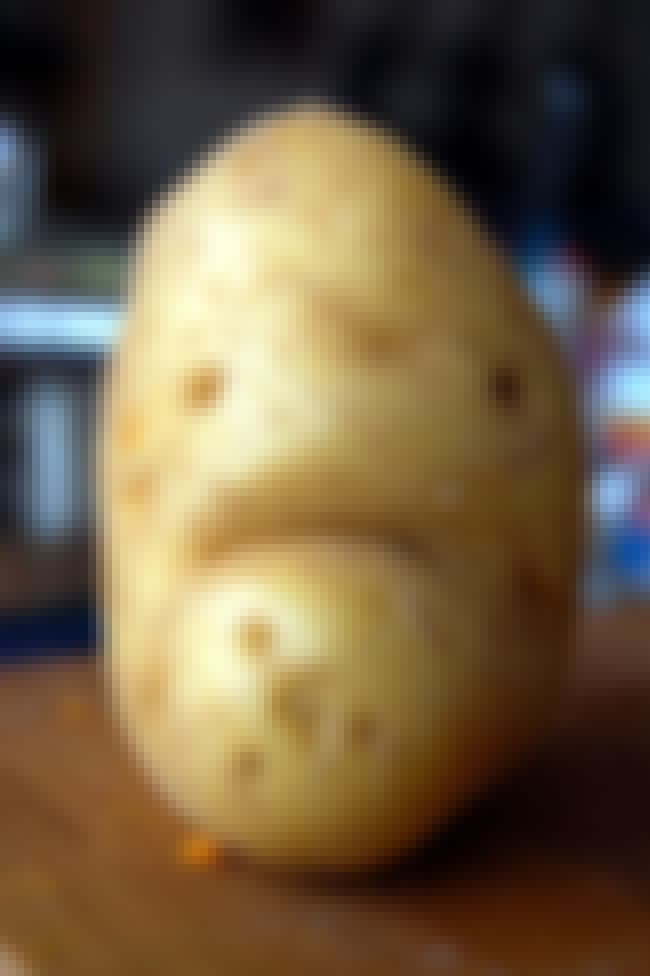 It Ain't Easy Being Potato is listed (or ranked) 2 on the list 40+ Everyday Objects That Look Super Sad