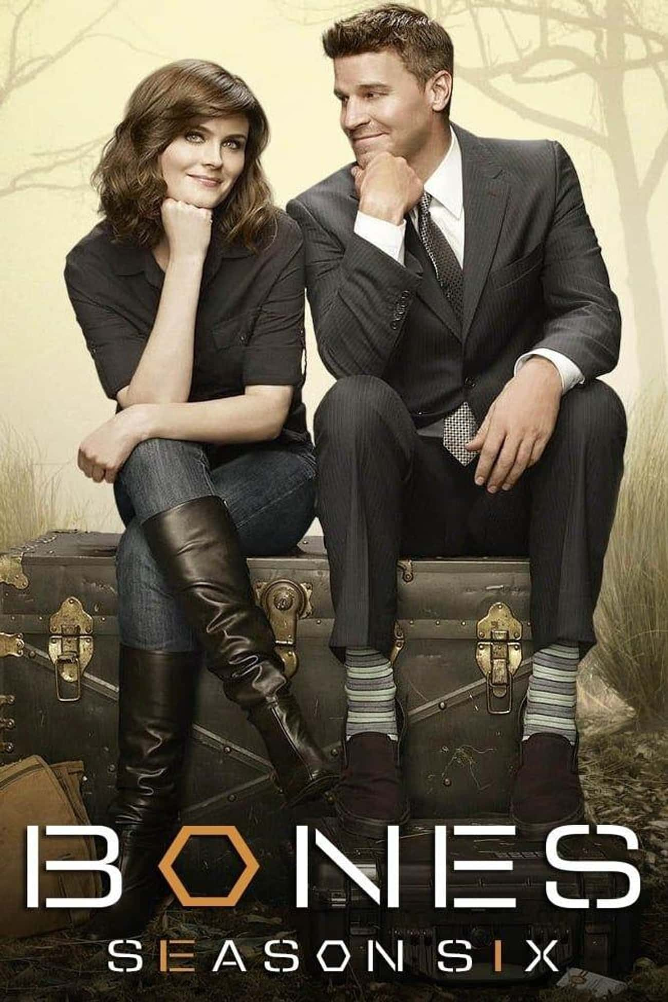 Bones - Season 6 is listed (or ranked) 3 on the list The Best Seasons of 'Bones'