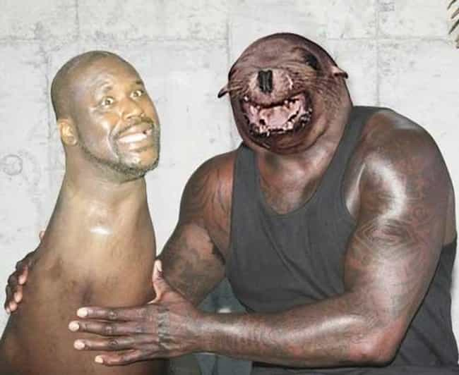 Shaqtin' a Face Swap is listed (or ranked) 2 on the list Disturbing Face Swaps That'll Give You Nightmares Forever